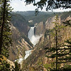 Grand Canyon of Yellowstone
